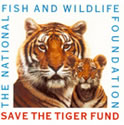 Save the Tiger Fund Logo