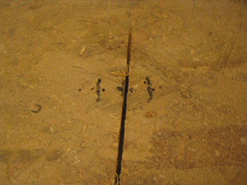 Find-Joists-Using-Drill
