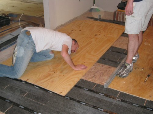 check-subfloor-for-level