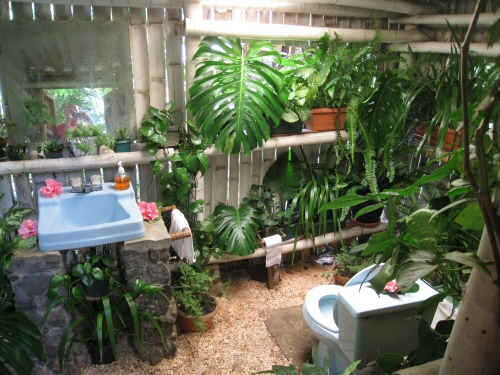 tropical bathroom sink and toilet