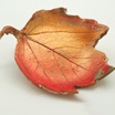 How to Make Autumn Leaf Bowls Using Clay