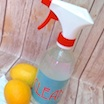 Homemade All Purpose Cleaner with Essential Oils