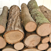 How to Kill Bugs in Wood: My FREE Decorative Logs