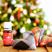 Handmade Holiday: DIY Hand Warmers with Essential Oils
